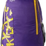Skybags Purple Casual Backpack